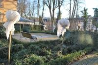 So wie hier im Rosengärtle in Gmünd ist es richtig: Mit Vlies und Tannenzweigen abgedeckt sind für Pflanzen keine Frostschäden zu befürchten. Foto: nb