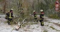 Foto: Feuerwehr Heubach
