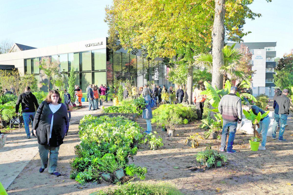 Großer Abverkauf der Pflanzen der Remstal Gartenschau