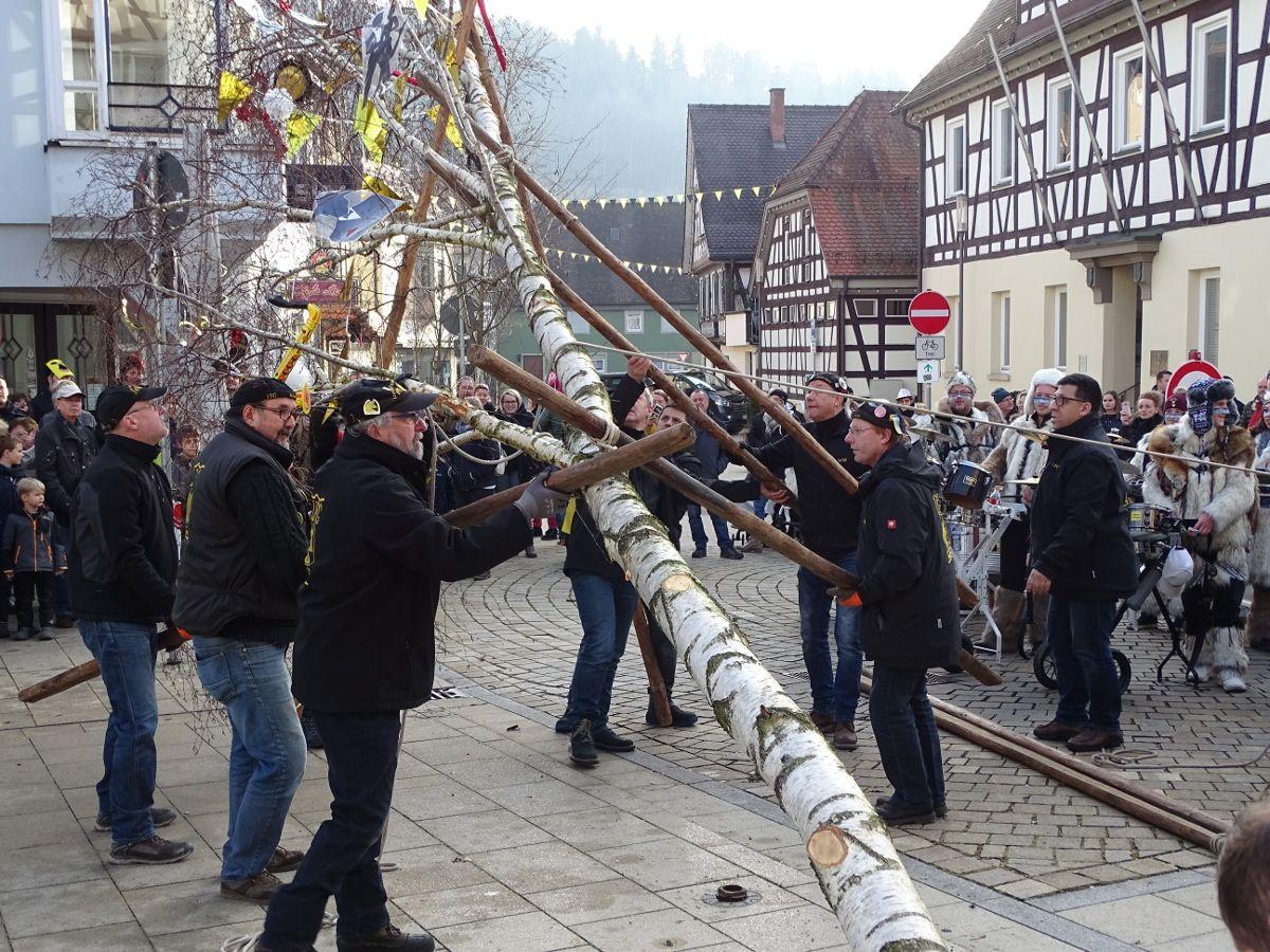 Narrenbaum in Lorch aufgestellt